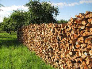 Biomasse Förderung