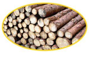 Produkte für die Holzverbrennung